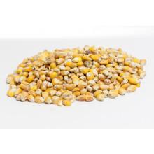 Mais (geschoond) 20kg